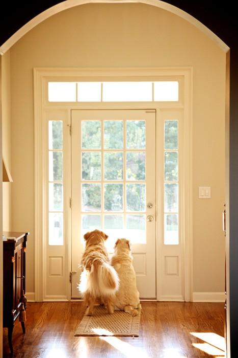 House - door