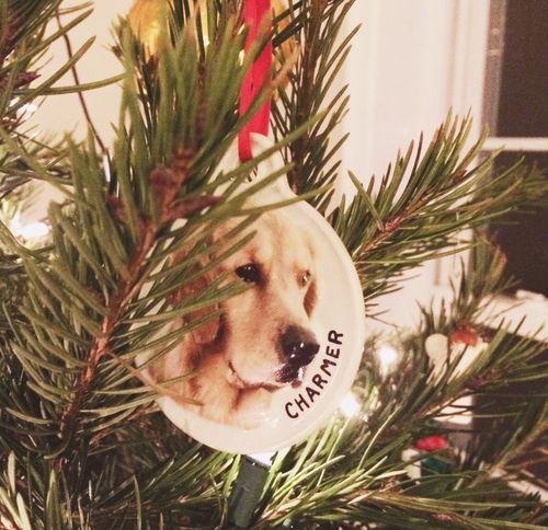 Charmer ornament